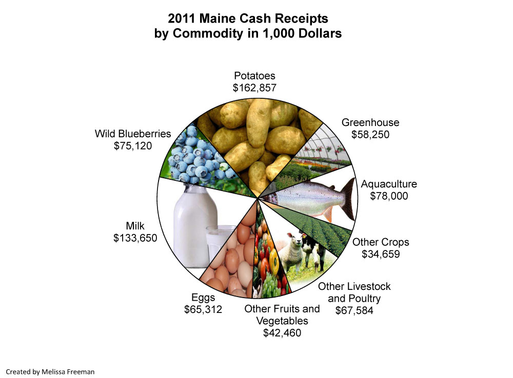 2011-Commodities-Pie-Chart