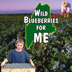 Blueberries for ME