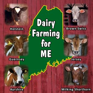 Dairy for ME